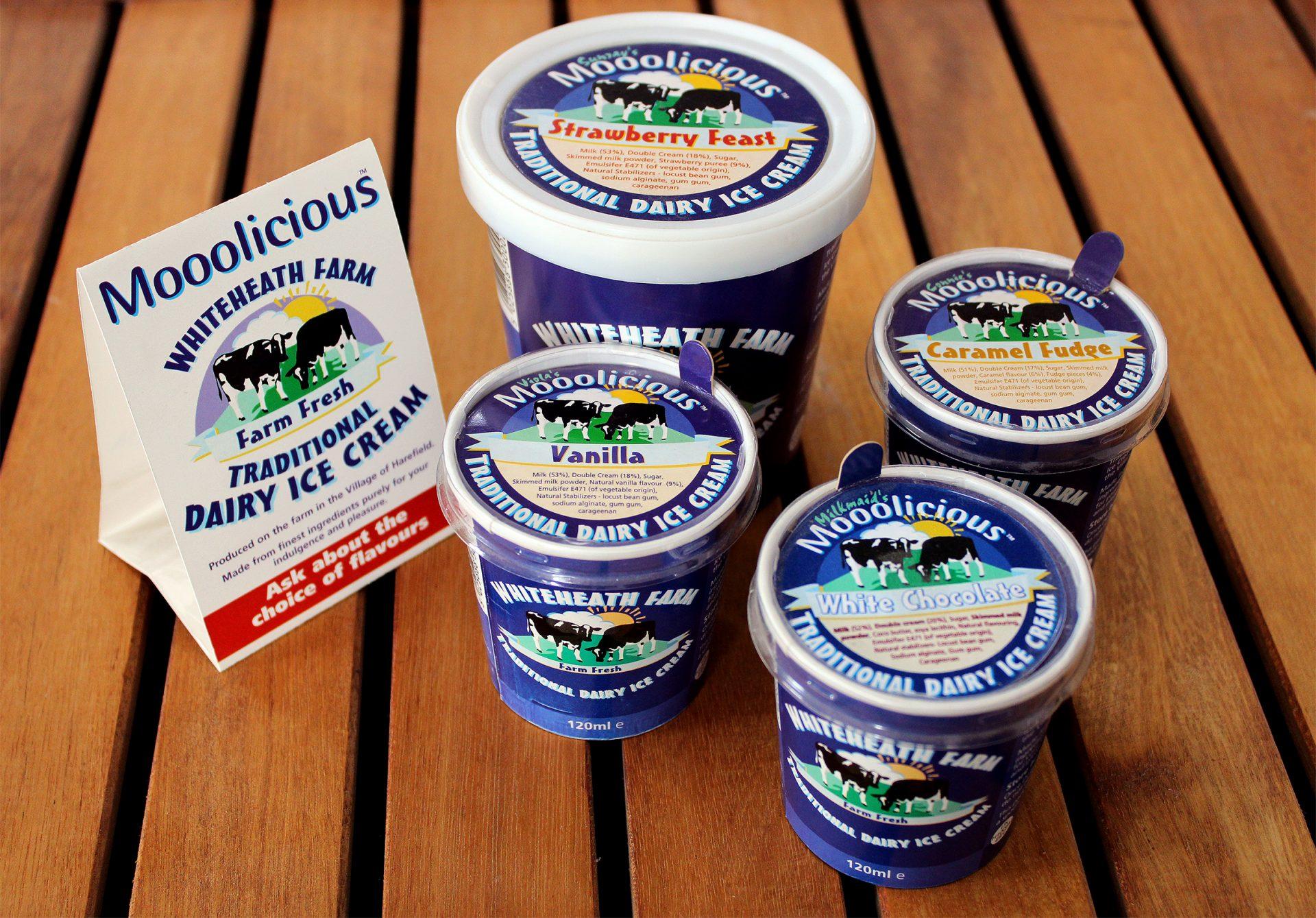Ice Cream Packaging Design & Branding
